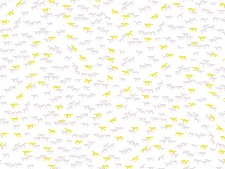 http://www.laet.com.br/site/files/gimgs/39_cavalinhos.jpg