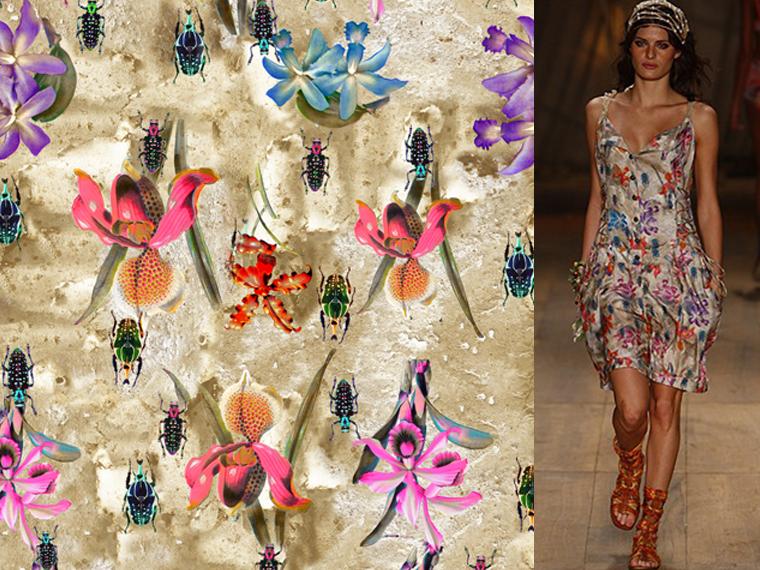 http://www.laet.com.br/site/files/gimgs/43_orquideas-e-insetos02foto.jpg